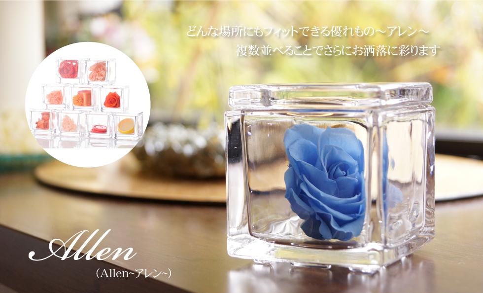 Allen(アレン)Large